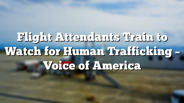 Flight Attendants Train to Watch for Human Trafficking – Voice of America