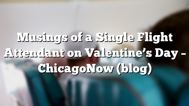 Musings of a Single Flight Attendant on Valentine's Day – ChicagoNow (blog)